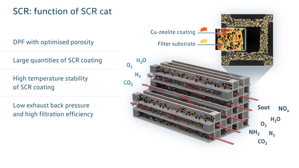 function-of-scr-cat